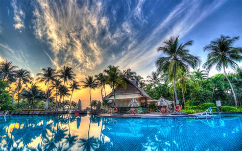 Palm Trees Pool Orange Sky Sunset 4k Wallpapers For