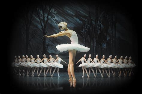 6 reasons you need to see the St Petersburg Ballet
